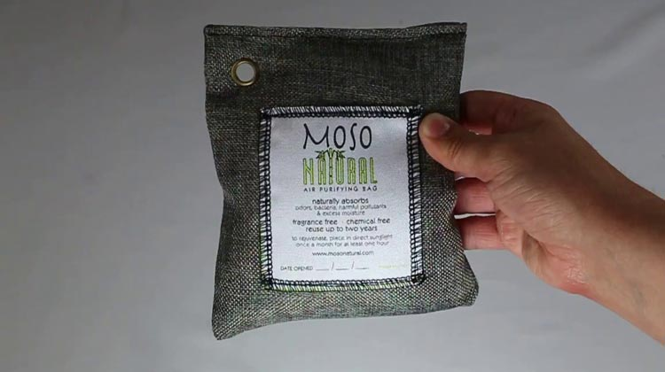 Overview On Air Purifying Bag