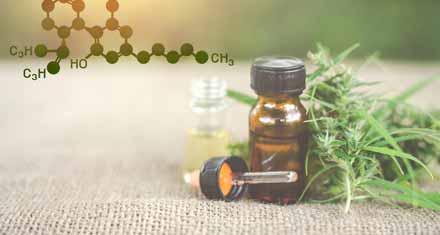 CBD Oil-Medication for Autism