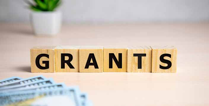 Federal Government Grants